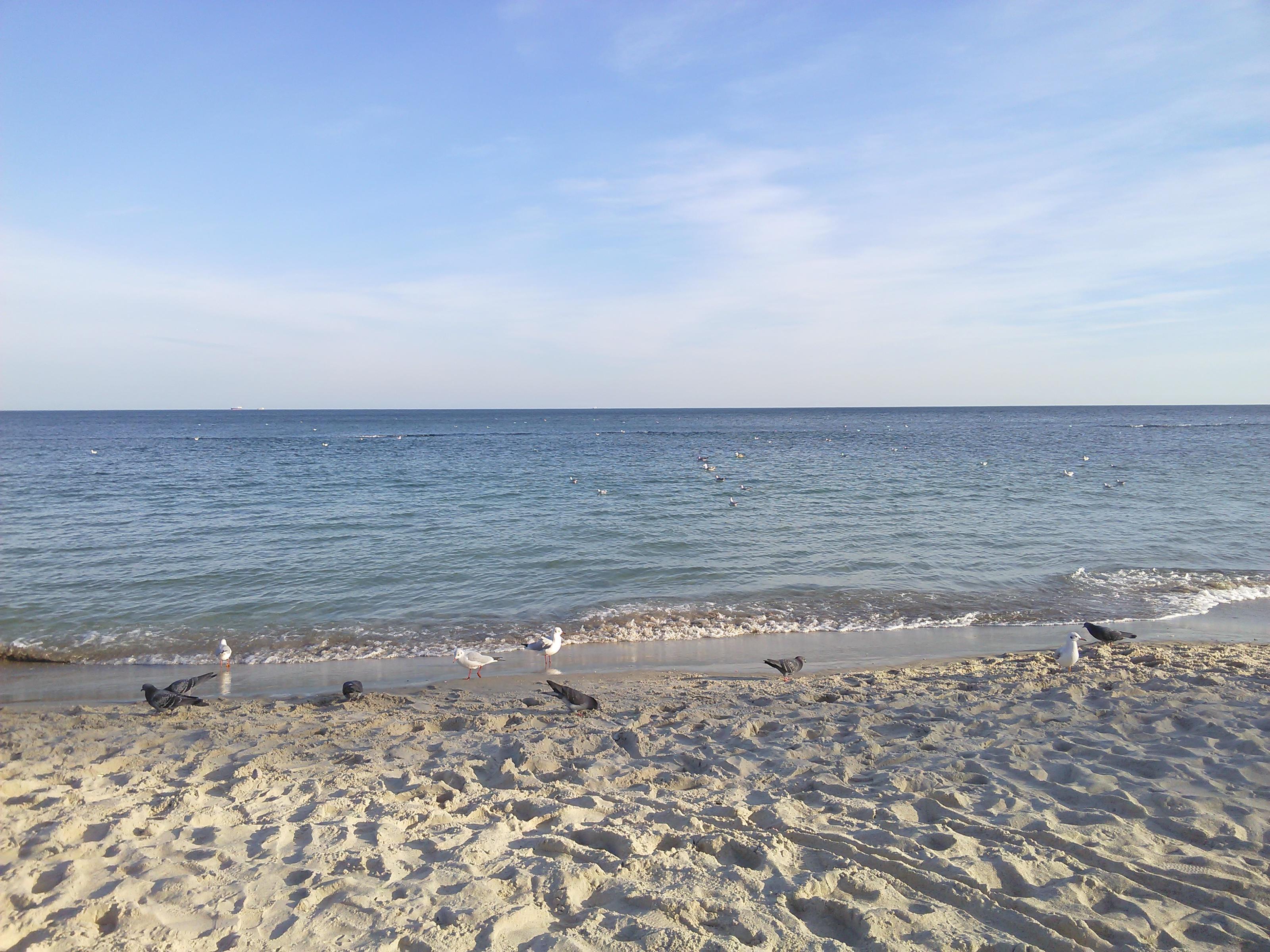 Отдых у моря в Одессе и Одесской области