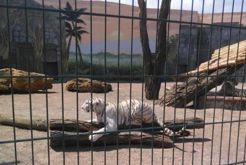 Биопарк в Одессе